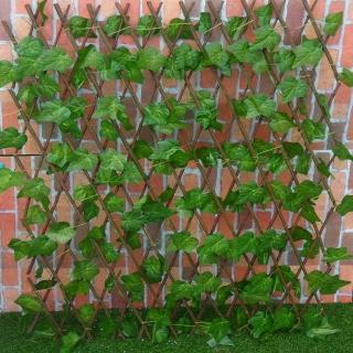【園藝世界】籬笆-4尺葡萄葉圍籬