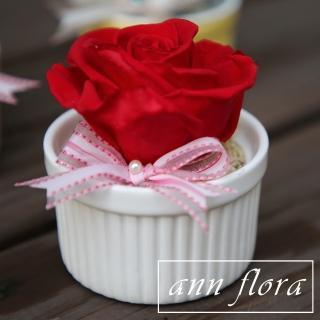 【ann flora】一心一意永生花盆栽(主花為永生玫瑰花)