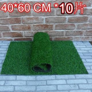 【園藝世界】人造草皮-40*60 公分*10入