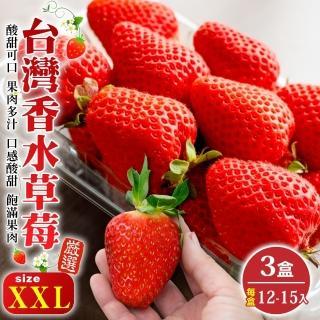 【WANG 蔬果】台灣嚴選香水草莓XXL號(3盒_12-15入/400g/盒)