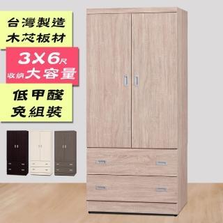 【本木】塔宇 北歐簡約鏡面二抽拉門衣櫃(3x6尺)