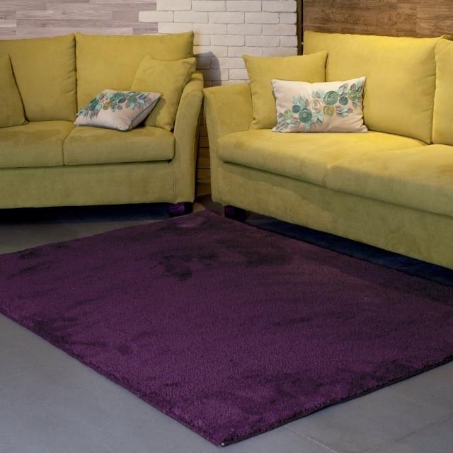 【山德力】凡地剛地毯
