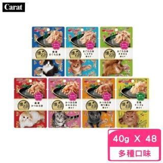 【NISSIN 日清】懷石海鮮湯餐包 40g(48包組)