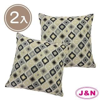【J&N】亞格麗緻抱枕45*45(---2入)