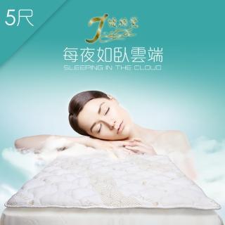【J-style婕絲黛】台製天絲加厚型防蹣透氣日式床墊(雙人5尺)
