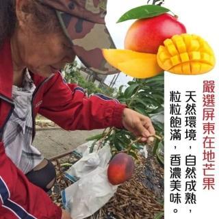 【果農直配】屏東嚴選愛文芒果(原裝20-24入/約10斤)
