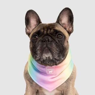 【CANADA POOCH】涼感領巾-彩虹(寵物配件-CANADA POOCH-Chill Seeker Bandana Rainbow)