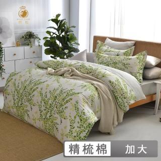 【ROYALCOVER】純棉四件式兩用被床包組 青青碧綠(加大)