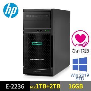【HP 惠普】ML30 Gen10 16GB 直立式伺服器