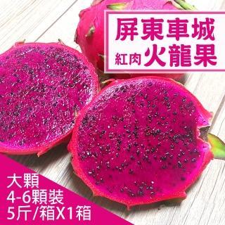 【產地直送】屏東車城紅肉火龍果5斤X1箱(5-6顆/箱)