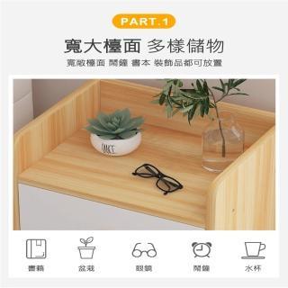 防疫必備 居家辦公櫃【慢慢家居】經典雙抽屜收納床頭櫃