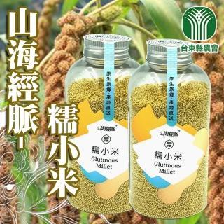 【台東縣農會】山海經脈-穀類珍寶-糯小米-230g(1罐組)