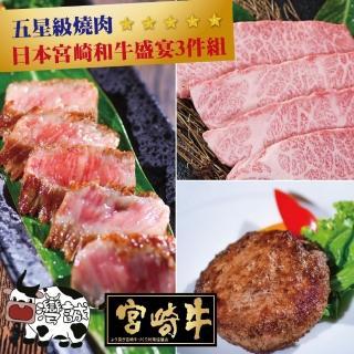 【台灣誠】日本宮崎和牛盛宴3件組(嫩肩200g+漢堡排300g+蘋果臀200g)