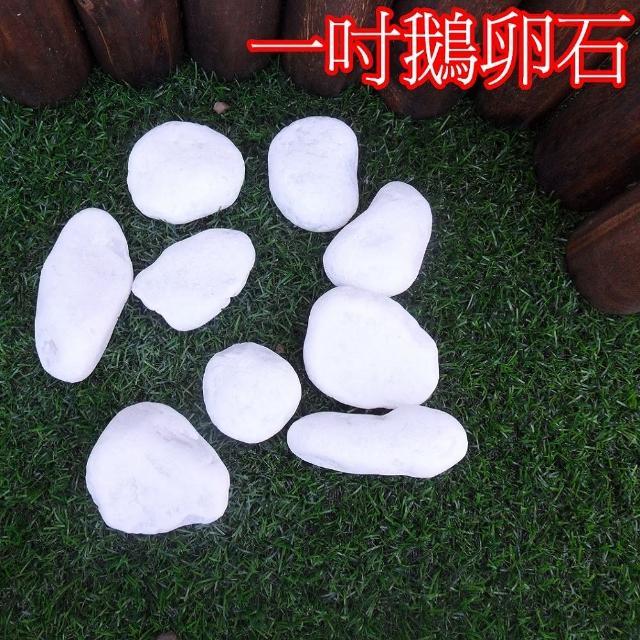 【園藝世界】白色鵝卵石-20公斤裝(陽台造景鵝卵石)